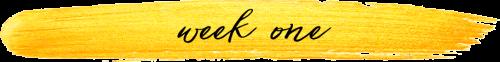 week one sub-heading