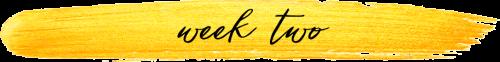 week two sub-heading